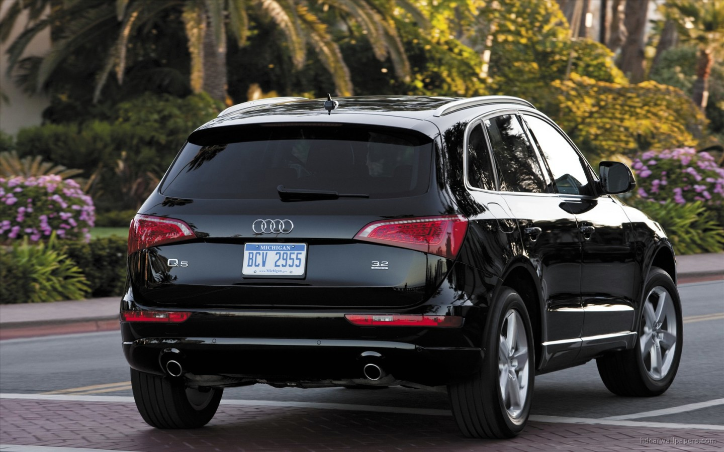 2010 audi q5 wallpaper hd car wallpapers id 130. Black Bedroom Furniture Sets. Home Design Ideas