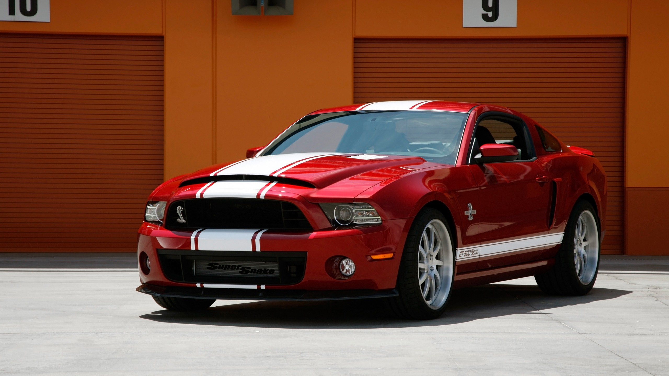 2014 Shelby Gt500 Super Snake Wallpaper Hd Car