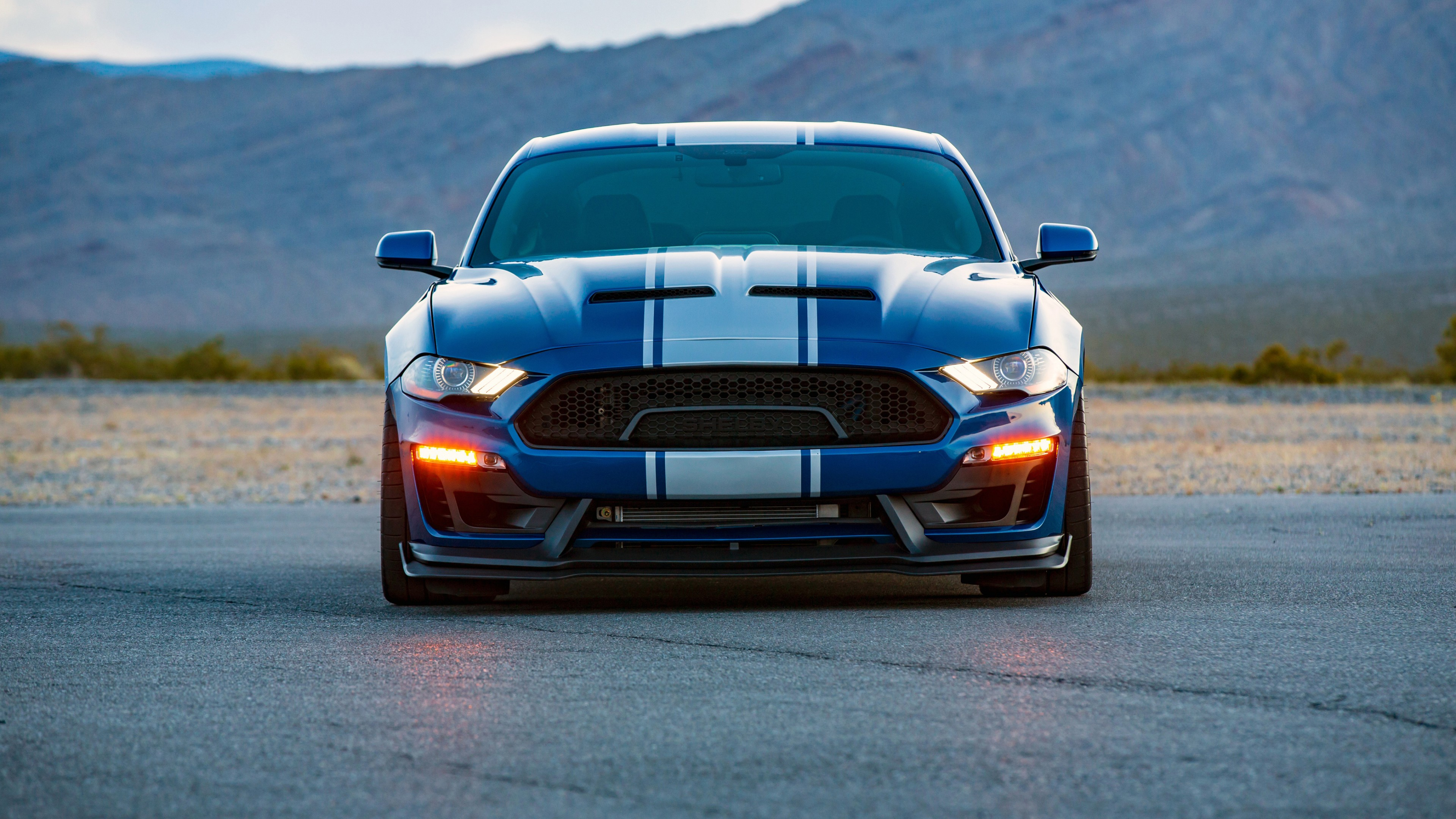 4k wide body super snake hd shelby ultra wallpapers 1080 2560 resolutions 2160 hdcarwallpapers 1600