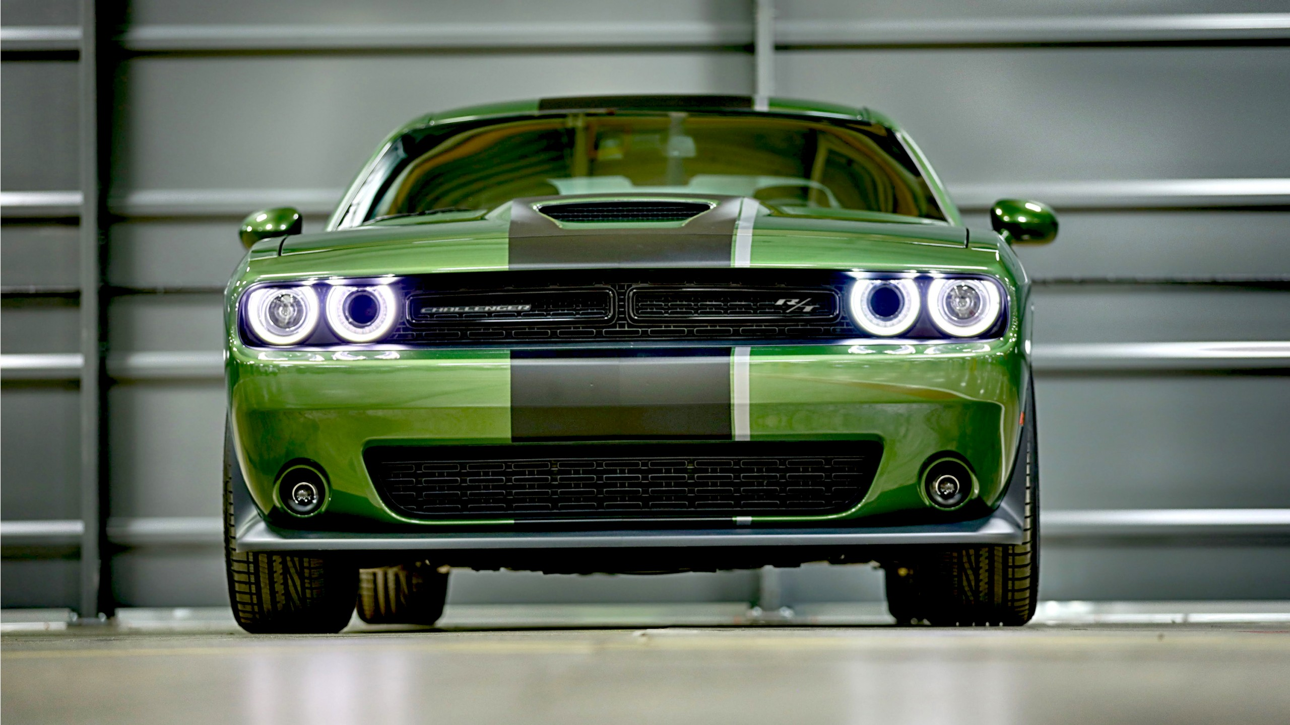 2019 Dodge Challenger RT Stars & Stripes Edition Wallpaper | HD Car Wallpapers | ID #12456