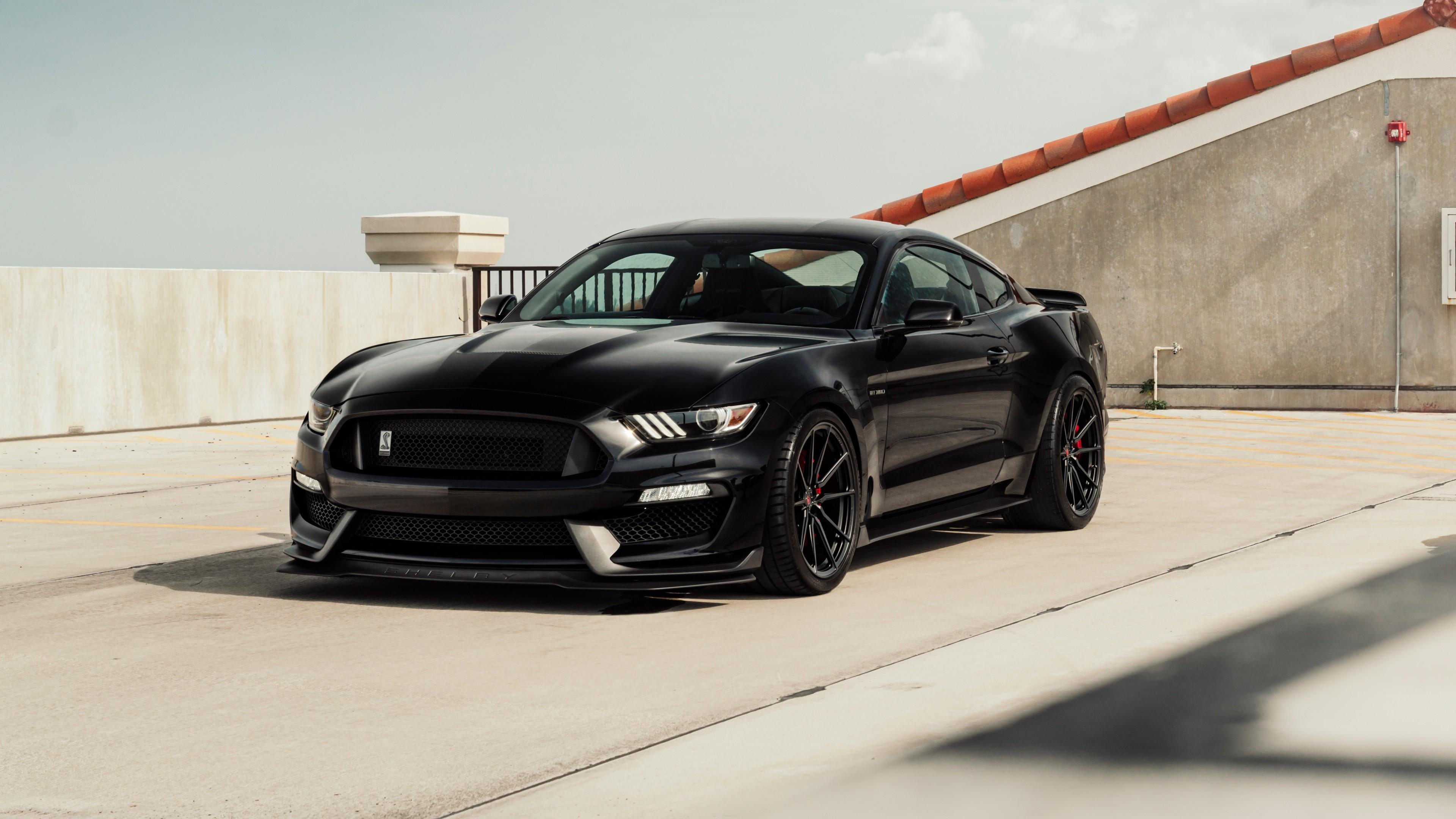 Black Ford Mustang 5k Wallpaper Hd Car Wallpapers Id 10951