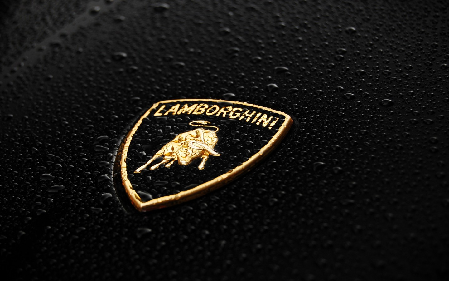 Lamborghini Logo X on mini car logo
