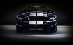 2010 Shelby GT500 4