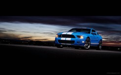 2010 Shelby GT500 5