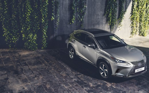 2017 Lexus NX 300h Luxury Crossover