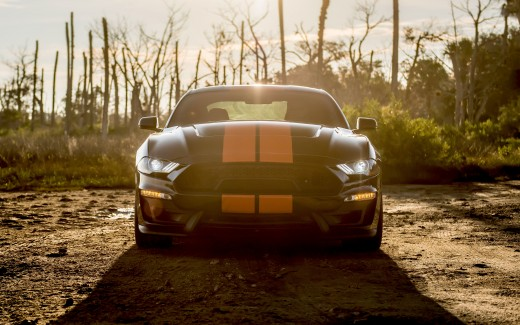 2019 Shelby Ford Mustang GT-S 4K 2