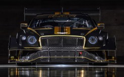 Bentley Continental GT3 Pikes Peak 2021 5K 2