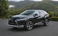 Lexus RX 300 Crafted Edition 2021 4K