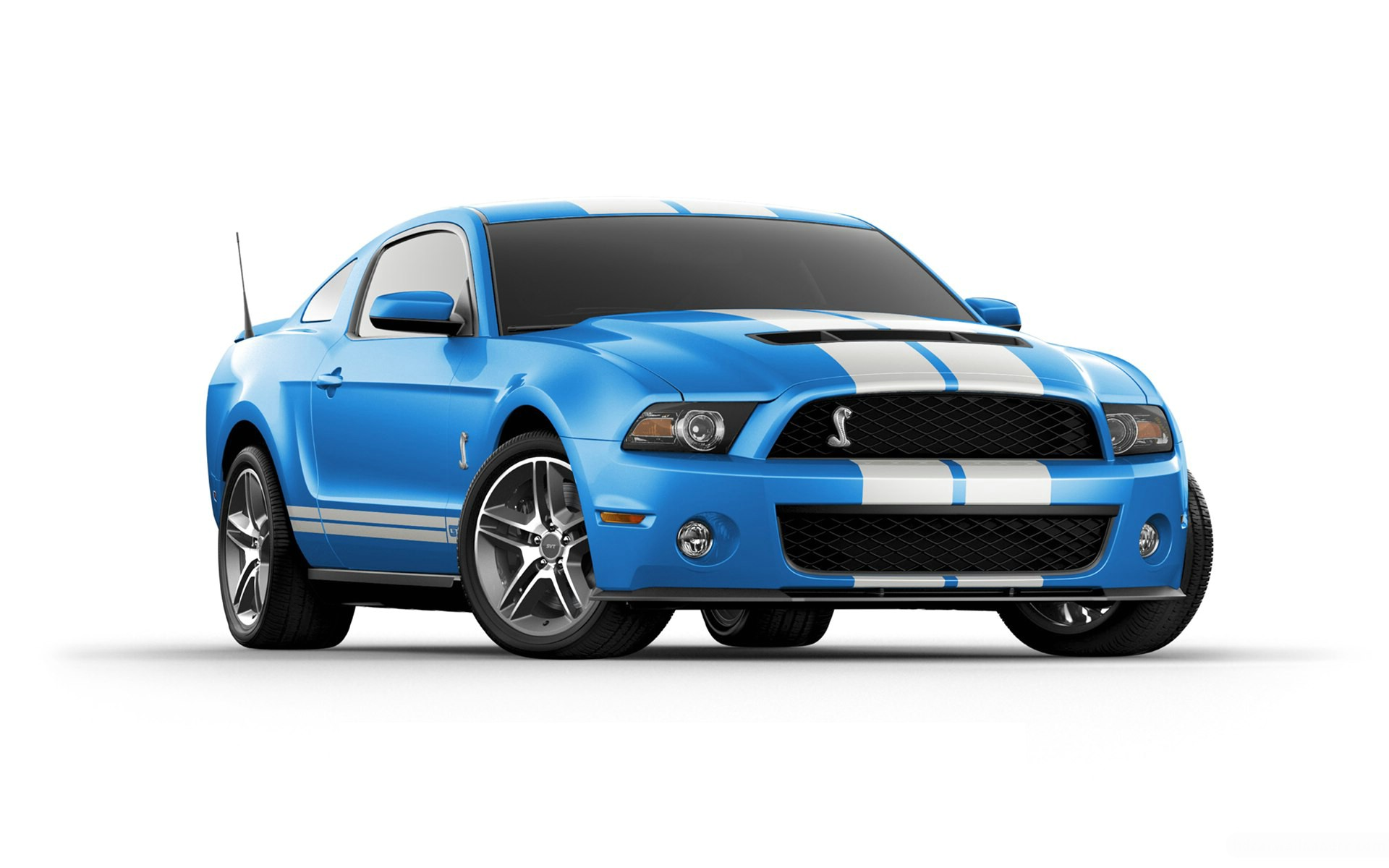 2012 ford shelby gt500 wallpaper hd car wallpapers id 2121. Black Bedroom Furniture Sets. Home Design Ideas
