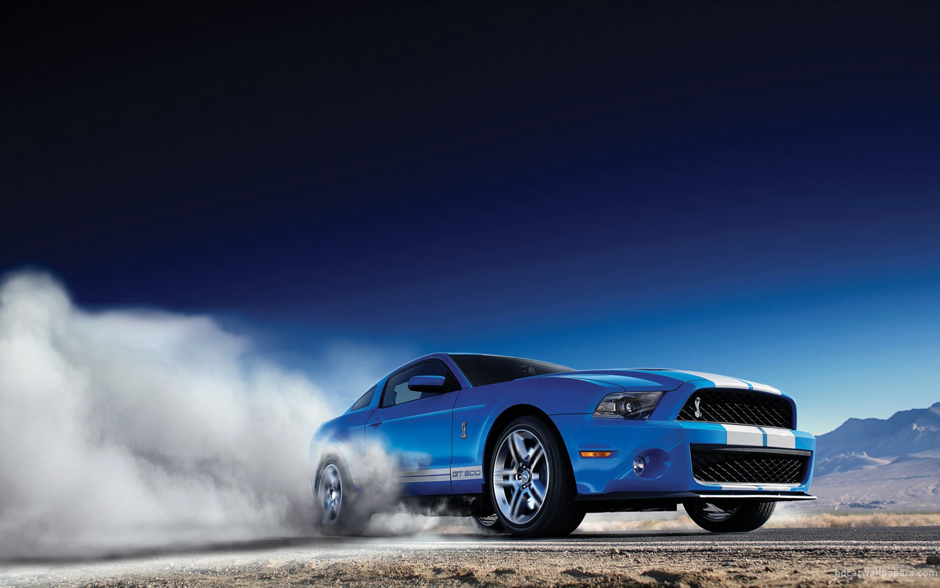 10 best shelby 1000 images on pinterest dream cars ford mustangs and american muscle cars