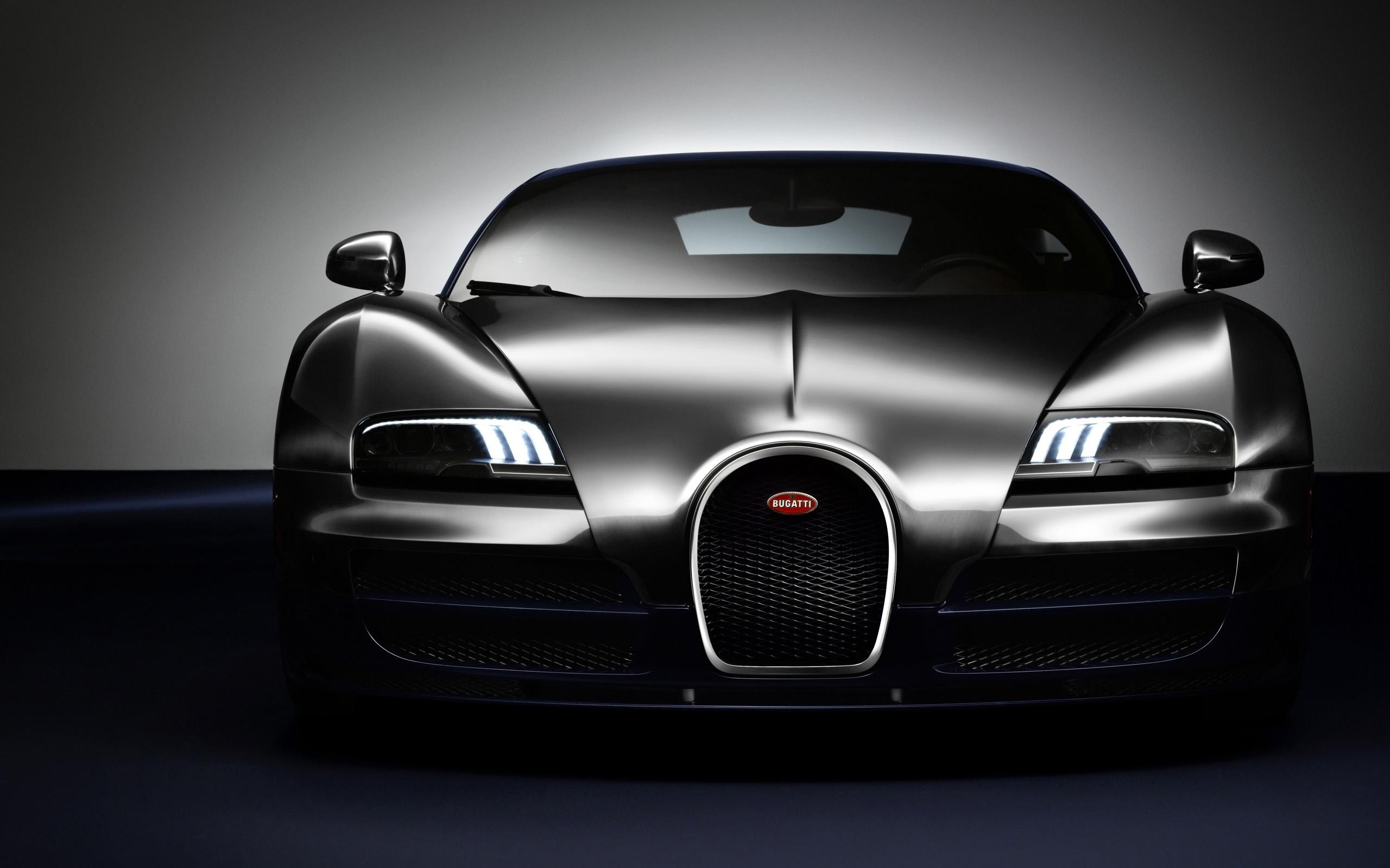2014 Bugatti Veyron Ettore Legend Edition 2
