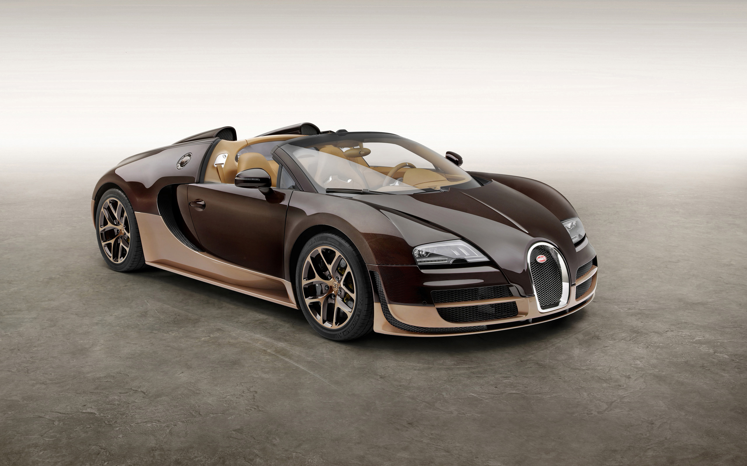 2014 bugatti veyron grand sport vitesse legend rembrandt. Black Bedroom Furniture Sets. Home Design Ideas