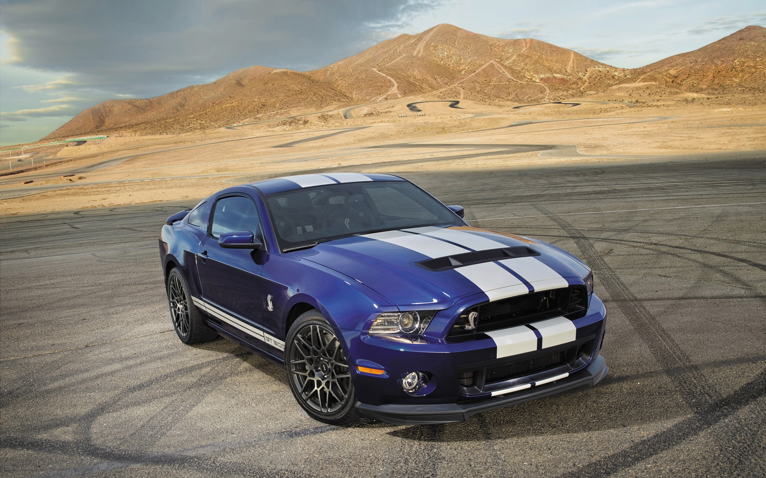2014 Ford Shelby GT500 2 Wallpaper | HD Car Wallpapers ...