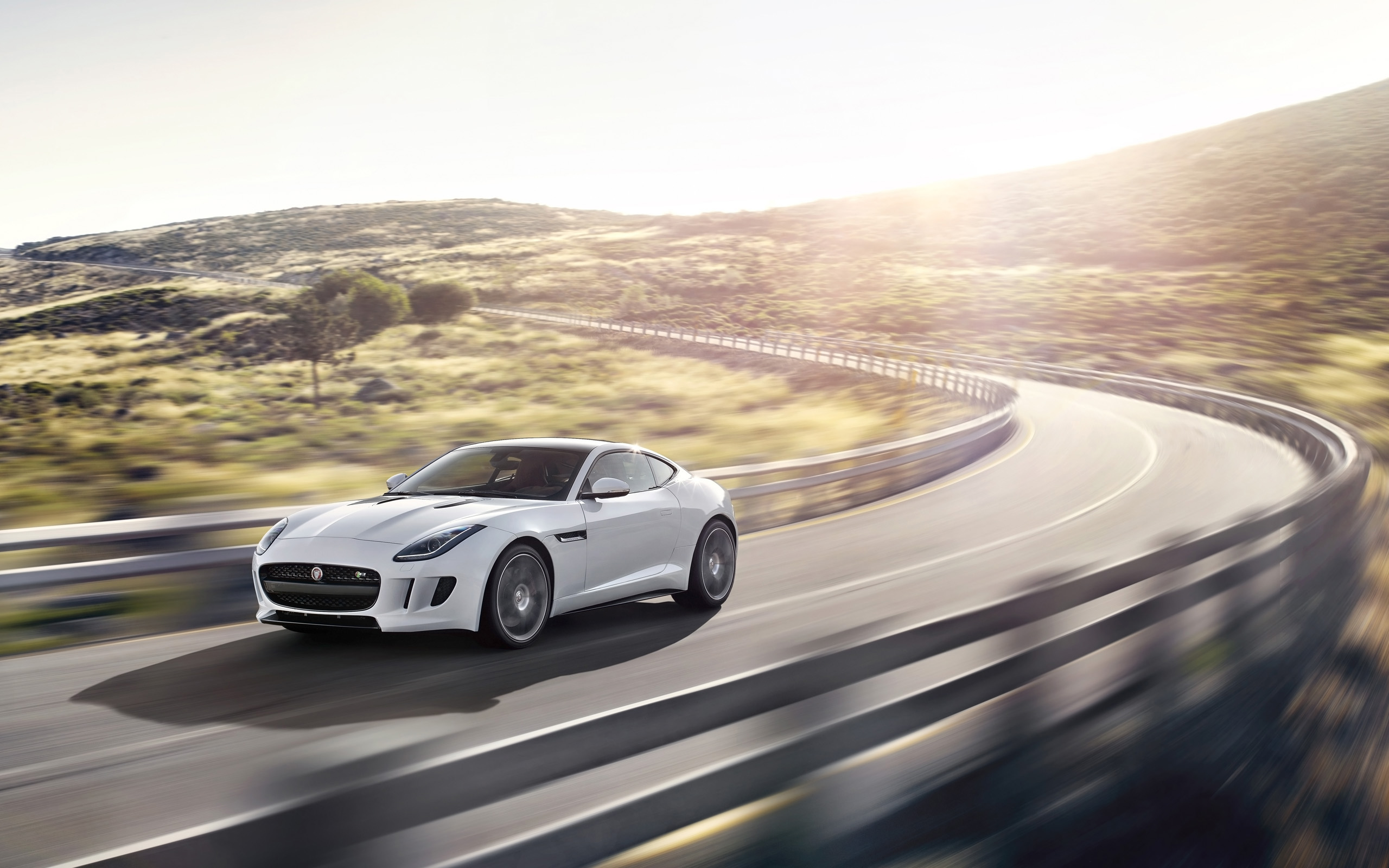 2014 Jaguar F Type R Coupe 5 Wallpaper Hd Car Wallpapers Id 4130