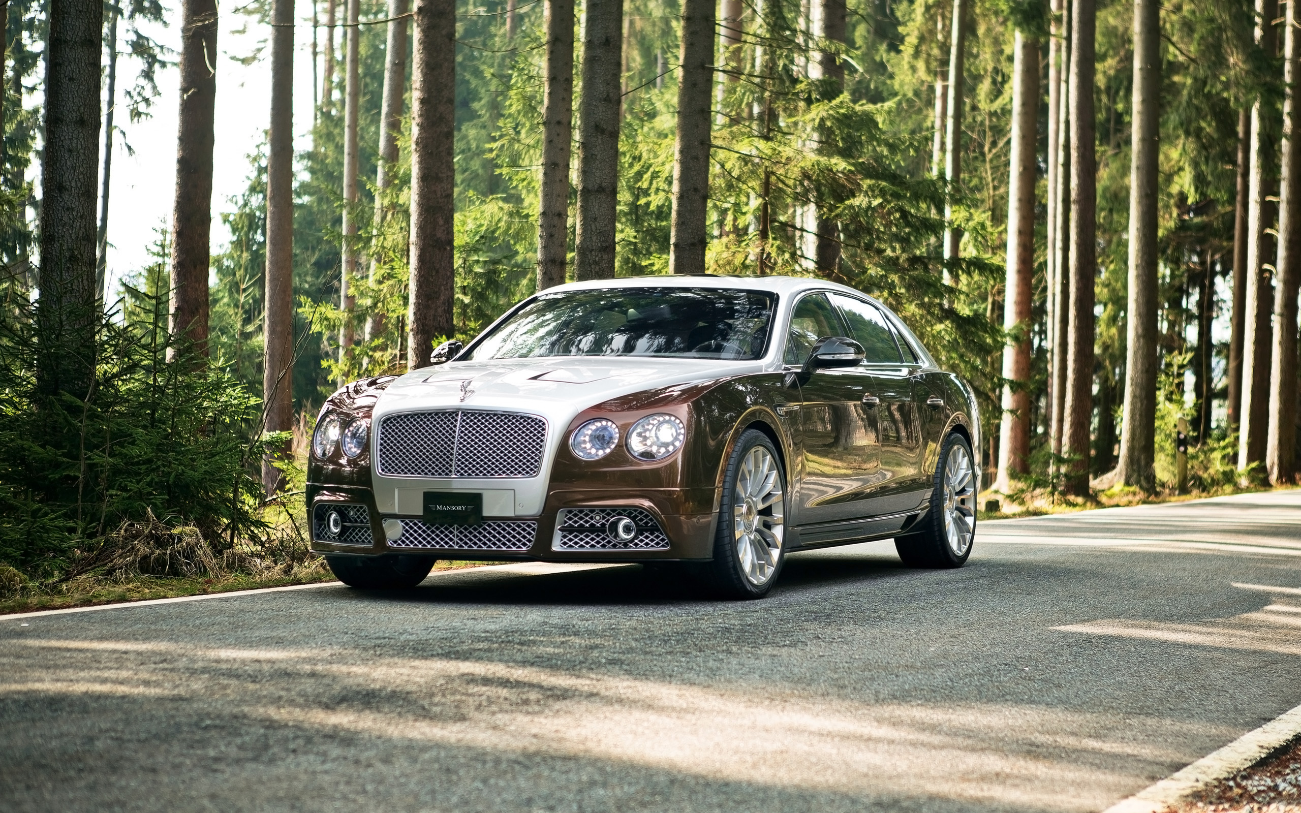 2014 Mansory Bentley Flying Spur Wallpaper Hd Car Wallpapers Id 4270