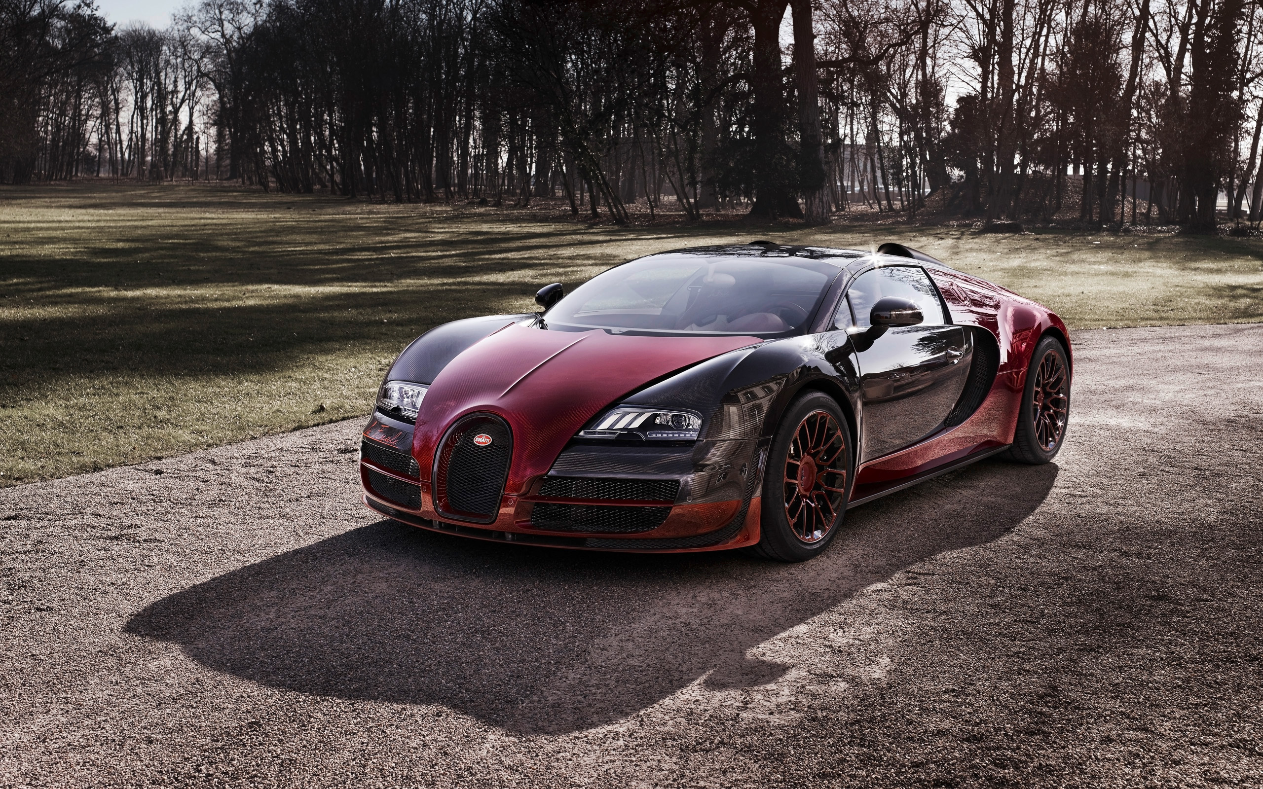 2015 bugatti veyron grand sport vitesse la finale 2 wallpaper hd car wallpapers. Black Bedroom Furniture Sets. Home Design Ideas