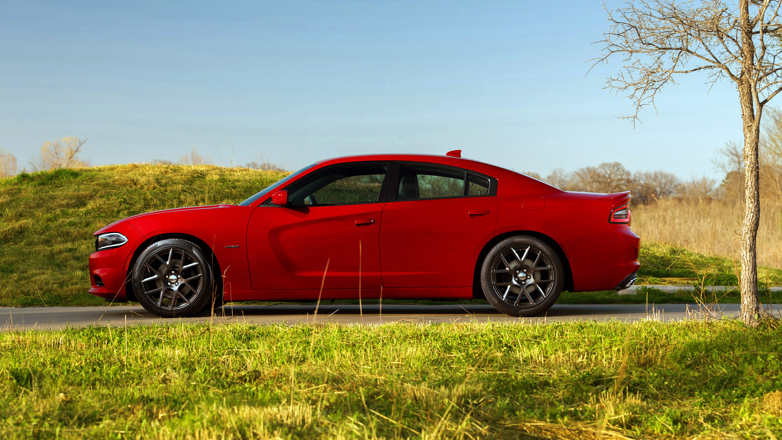 2015 Dodge Charger Rt Wallpaper Hd Car Wallpapers Id 4483