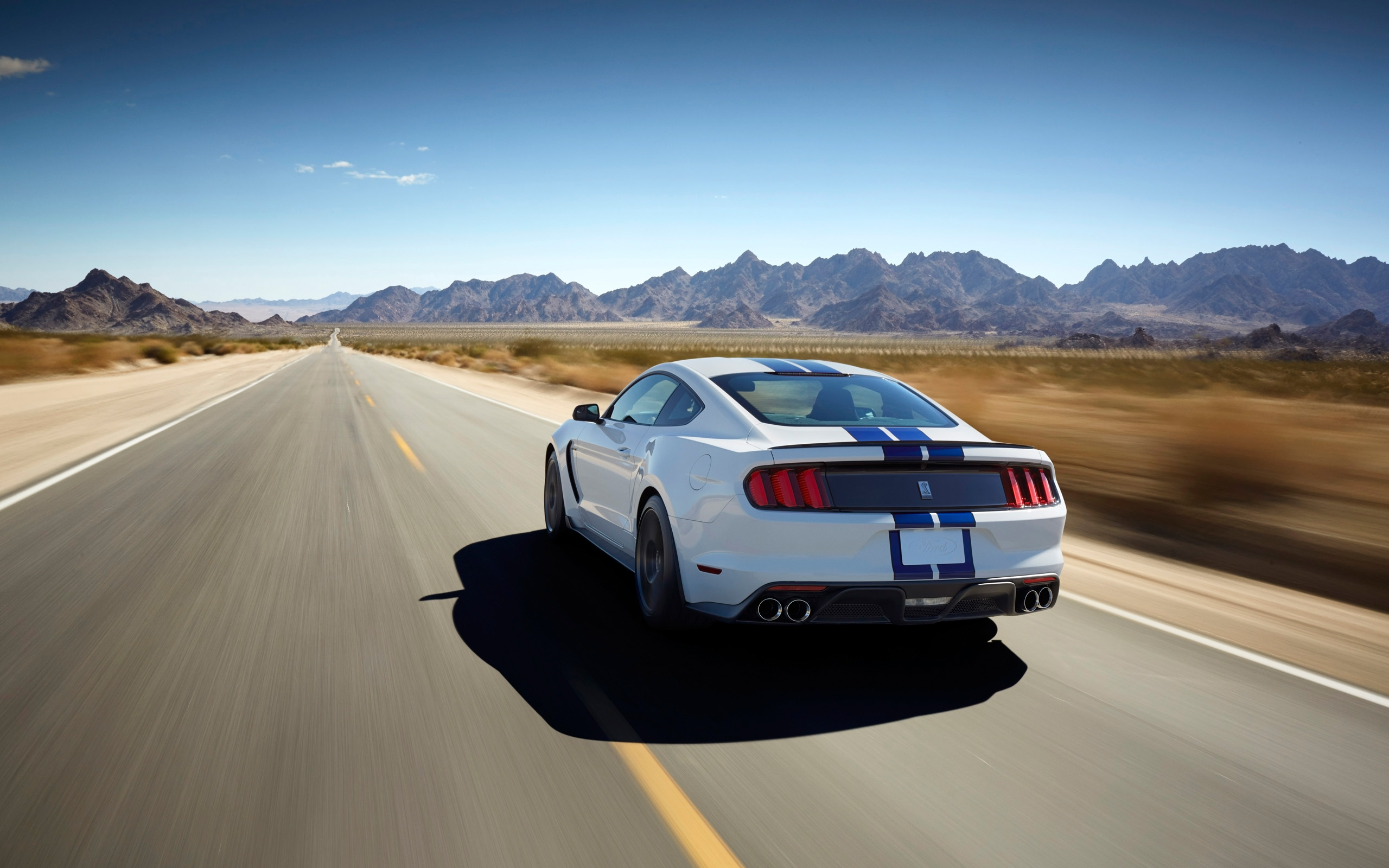 Pics Photos - Ford Mustang Shelby Ford Mustang Wallpapers Cobra Snake