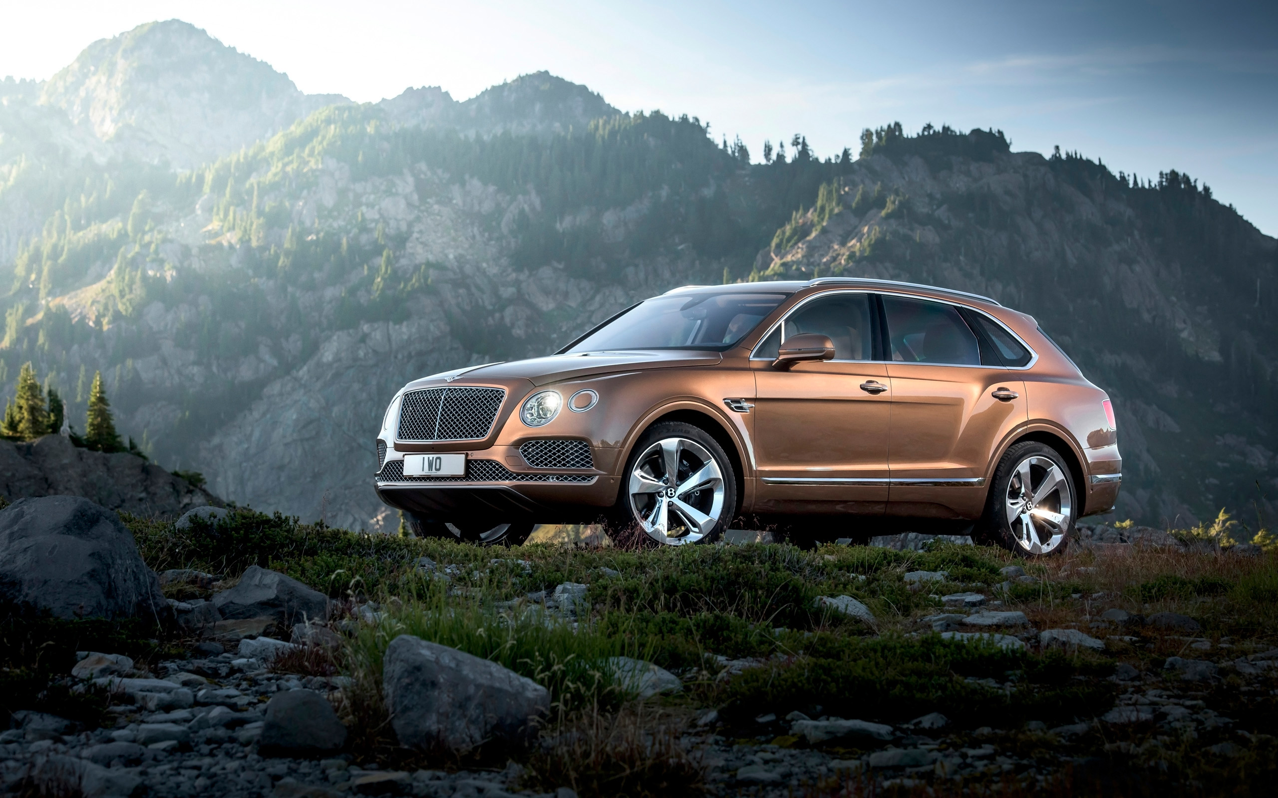 2016 Bentley Bentayga Wallpaper Hd Car Wallpapers