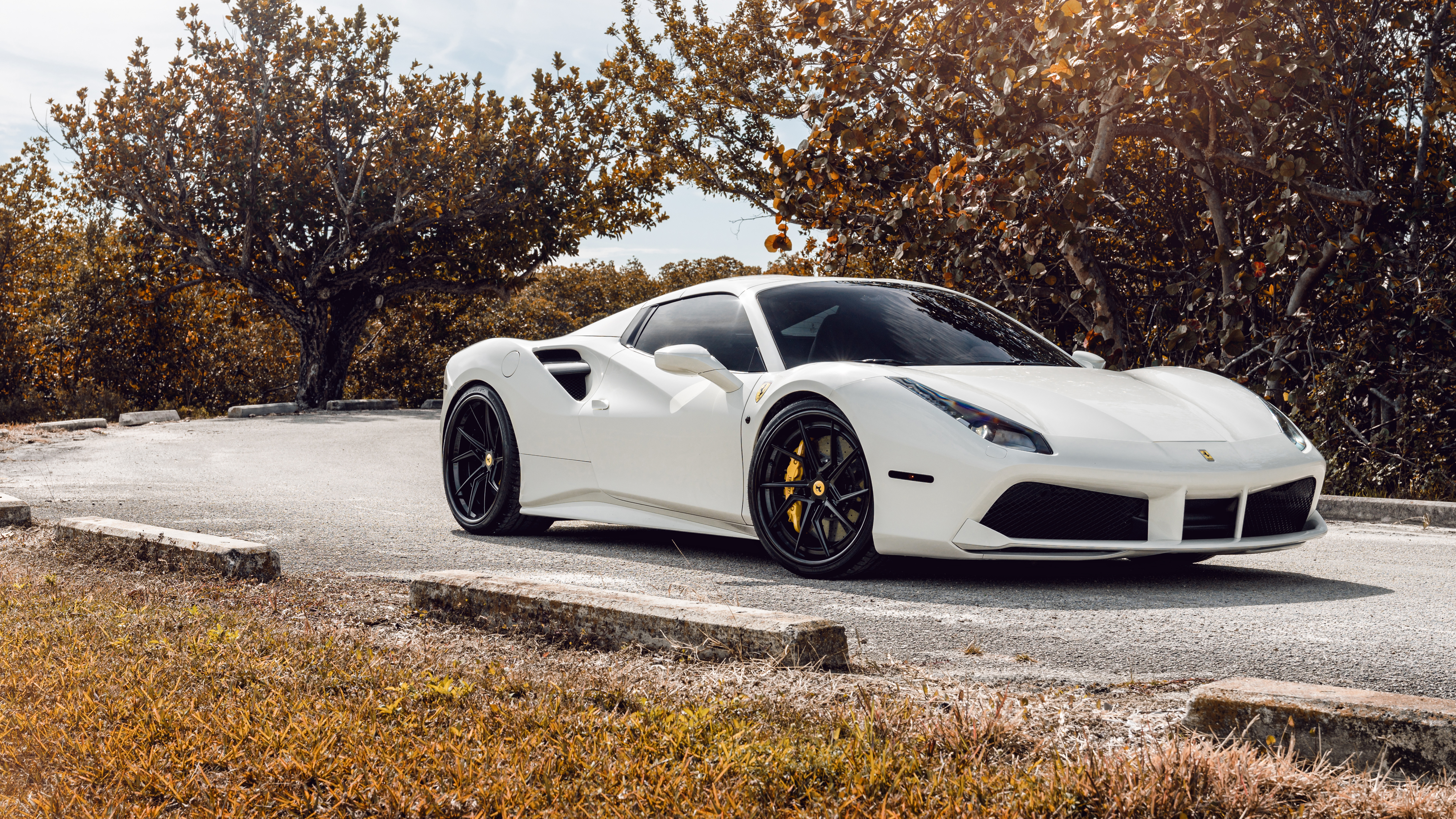 Ag White Ferrari 488 5k Wallpaper Hd Car Wallpapers Id 9795
