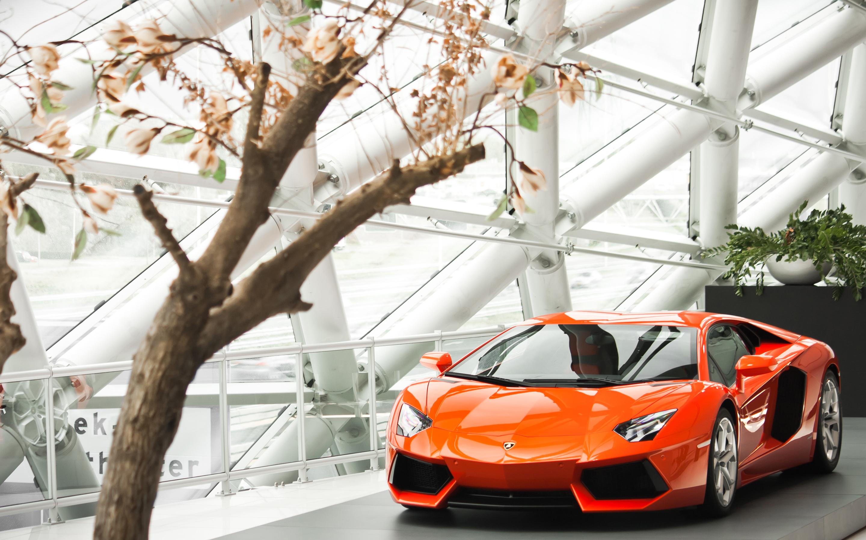 Image Gallery Lamborghini Wallpaper 2013