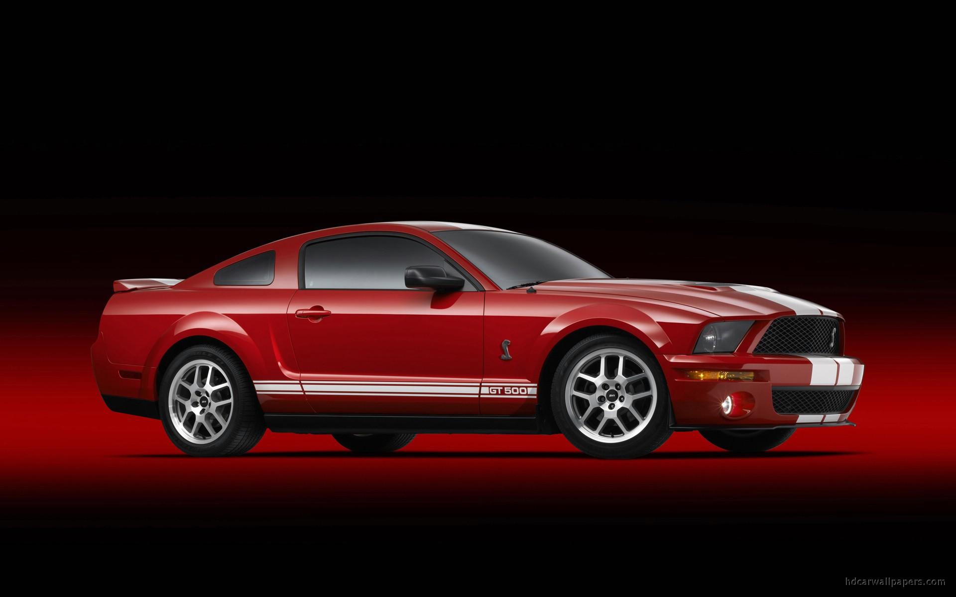 Shelby Cobra GT500 Mustang 5