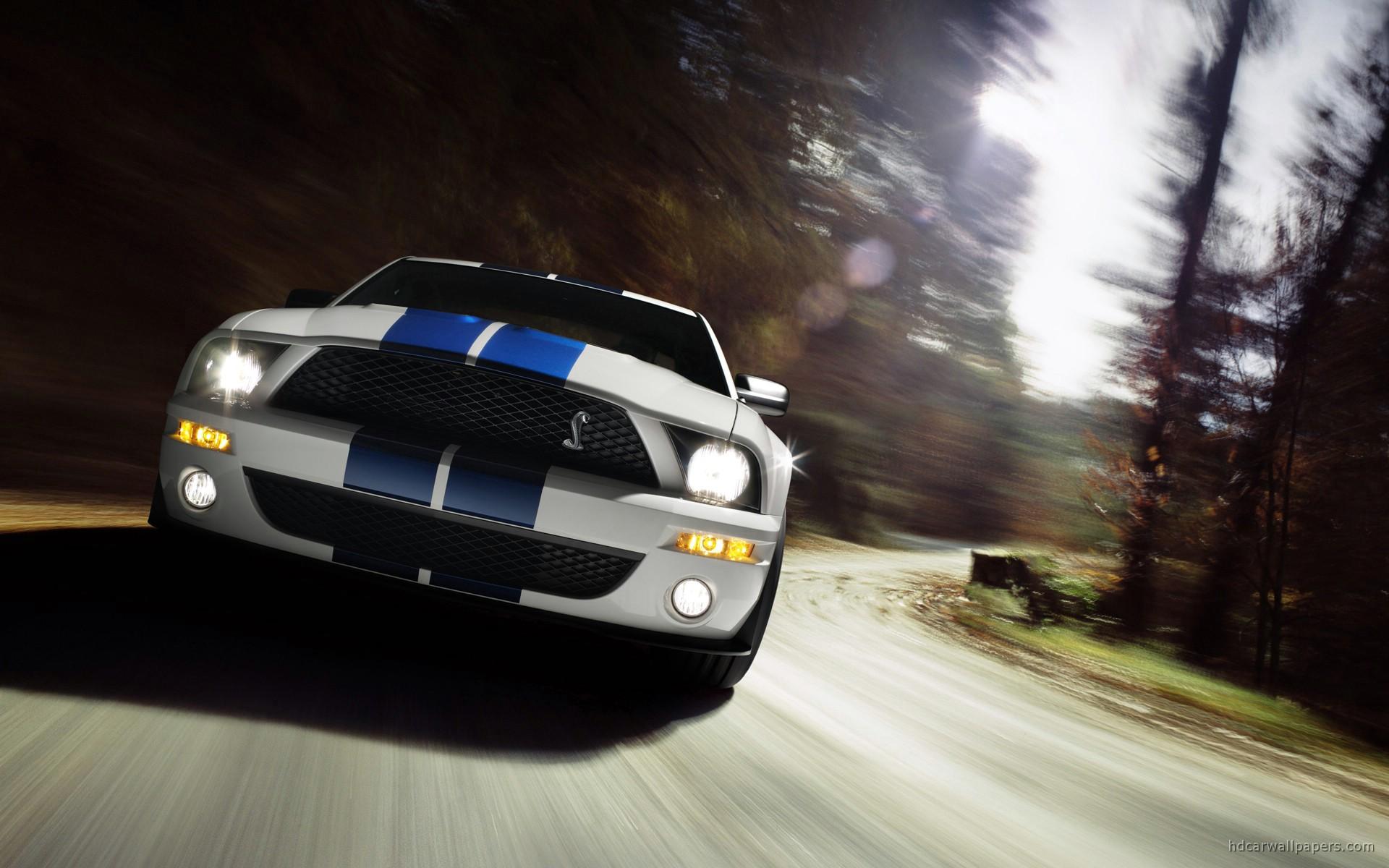 Shelby Cobra GT500 Mustang 9